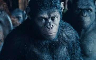 《猩球崛起:黎明之战》定档预告 8.29神作来袭