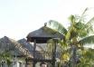 《神在巴厘岛》来年春上映 玉木宏变身眼科医生