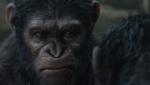 《猩球崛起2》终极预告 来自猩猩的旋风席卷中国