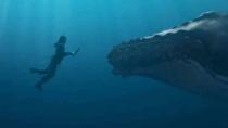 《海贼》CG制作特辑 孙艺珍挑战水下拍摄效果震撼