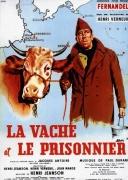 囚徒与母牛