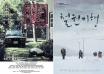 第19届釜山电影节:赞誉争论并存、中韩交流空前
