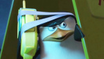 《马达加斯加的企鹅》制作特辑  狮子斑马说企鹅