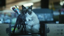 《暴躁猫最糟的圣诞节》预告 神奇猫宠开口讲话