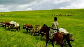 《狼图腾》发布环保特辑 众星联名呼吁守护草原