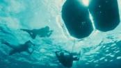 《坚不可摧》精彩片段 天空敌机水底鲨鱼双重威胁