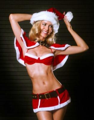 小李旧爱变身圣诞女神 美乳纤腰裙底风光无限