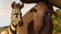 《斑马总动员》发超长版预告 呆萌小斑马华丽逆袭