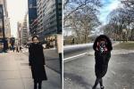 谢娜自晒纽约街头照 穿高领黑裙秒变九头身美女