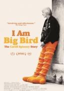 我是一只大大鸟
