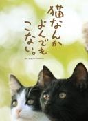 女校风波 电影哔哩
