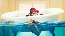 《帕丁顿熊》发布爆笑特辑 萌宠家族又添新成员