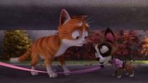 《魔法总动员》官方预告 精灵猫小弟温情护家园