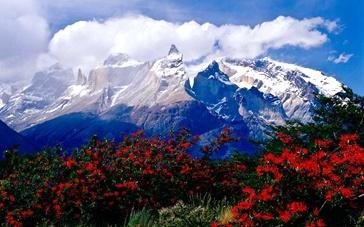 51期:智利翠谷雪峰天堂之地 大自然中光影印记