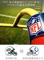 2015-2016赛季NFL纽约喷气机VS印第安纳小马
