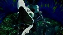 《小飞侠》梦幻岛特辑 巨型永无鸟霸王鳄轮番袭击