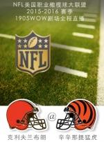 2015-2016赛季NFL克利夫兰布朗VS辛辛那提猛虎