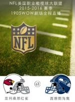 2015-2016赛季NFL亚利桑那红雀VS西雅图海鹰
