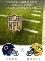 2015-2016赛季NFL芝加哥熊VS绿湾包装工