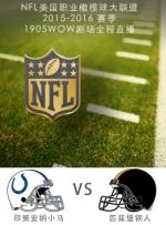 2015-2016赛季NFL印第安纳小马VS匹兹堡钢人