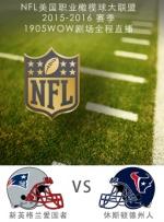 2015-2016赛季NFL新英格兰爱国者VS休斯顿德州人