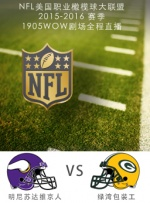 2015-2016赛季NFL明尼苏达维京人VS绿湾包装工