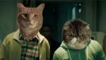 《基努猫》恶搞版预告 人脸换猫脸搞笑升级