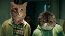 《基努猫》恶搞版中文预告 人脸换猫脸搞笑升级