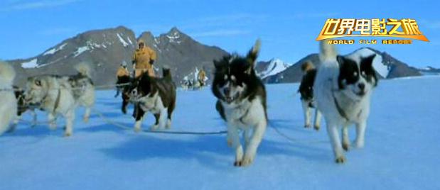 【世界电影之旅】穿行在静谧的南极间 走近神秘的梦幻之地