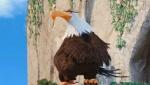 《愤怒的小鸟》宣传片 无敌神鹰露面剧情神反转