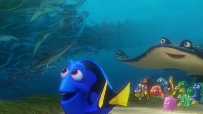 13年后鱼又游回来了 你还会去电影院找尼莫吗?
