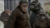 32期:《猩球崛起》影评 高光金句力证走心之作