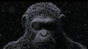 《猩球崛起3》曝宣传片 凯撒宣布战争开始
