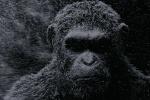 《猩球崛起3》霸气登顶美国第16届视效工会奖