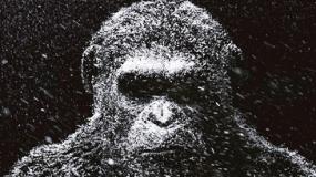 《猩球崛起3》中文先导沙龙网上娱乐 猩猩凯撒走向黑暗
