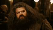 《哈利·波特与魔法石》片段