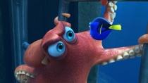 《海底总动员2:多莉去哪儿》韩国版预告片3