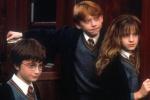 法国明年办霍格沃茨魔法学校 招生100名课程仅4天