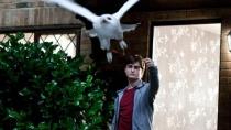 《哈利·波特与死亡圣器(上)》预告片