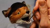 《了不起的狐狸爸爸》特辑 流行前沿的狐狸