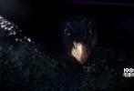 由华纳兄弟电影公司出品、J.K.罗琳首任编剧的3D魔幻巨制《神奇动物在哪里》,将于11月25日登陆内地银幕。影片今日(11月14日)发布制作特辑,导演大卫·耶茨、制片人大卫·黑曼以及曾制作过《地心引力》的特效师克里斯·帕克现身解读《神奇动物在哪里》如何用3D技术实现这个全新魔法次元的制作理念。主演埃迪·雷德梅恩也在采访中大谈与虚拟的神奇魔法动物对戏的各种趣事。