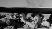 《沙漠之鼠》预告片