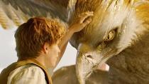 《神奇动物在哪里》原声音乐视听 激昂雄壮有力