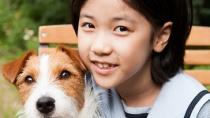 《偷狗的完美方法》MV