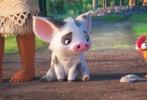 """由迪士尼动画工作室制作的动画冒险喜剧《海洋奇缘》(Moana)已于上周五(11月25日)与北美同步登陆全国各大院线。影片上映首周末北美恰逢感恩节,《海洋奇缘》凭借合家欢性质票房一路走高,最终首映五天劲收8110万美元,击败同期大片《神奇动物在哪里》强势登顶北美票房榜!同时电影口碑持续发酵引发观影热潮,国内外专业网站评分居高不下。观众纷纷化身""""自来水""""力荐,""""暖萌治愈""""的欢乐观影感受成为合家欢首选。"""