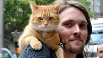 《流浪猫鲍勃》曝预告 瘾君子带猫流浪收获爱情