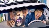 《功夫瑜伽》台湾版预告 成龙与狮同车闹事狂飙