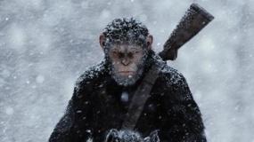 《猩球崛起3》正式版沙龙网上娱乐 种族大战爆发在即