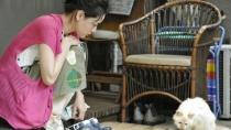 《租赁猫》预告片2
