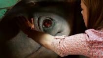 """《怪兽卡车》电视预告 如何与怪兽成为""""好基友"""""""